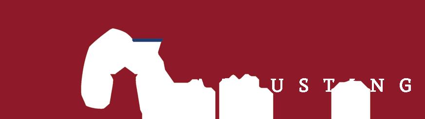 TGA_fullLogo_whiteA_873x245 - TransGlobal Adjusting